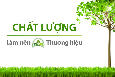 banner phải 1